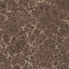 Marbled paper #5829