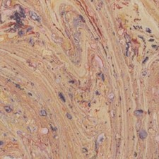 Marbled paper #5964