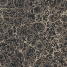 Marbled paper #6028