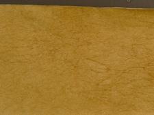 Crinkled Paper #SK52