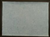 Kleisterpapier geädert #SK7